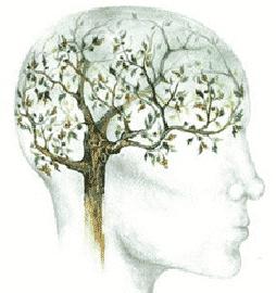 Υπηρεσίες Ψυχοθεραπείας